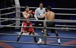 gala boksu WSB w Lubinie  1